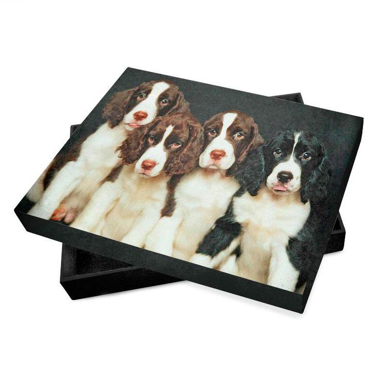 fotobuch box personalisieren