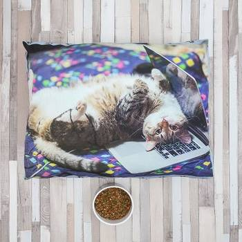 cuscino per animali