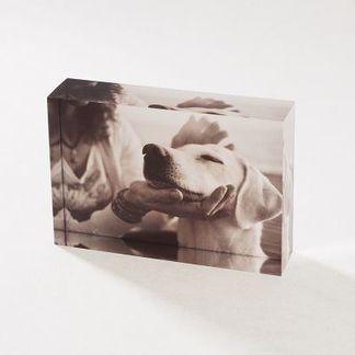 Bosses Day Acrylic Photo Block
