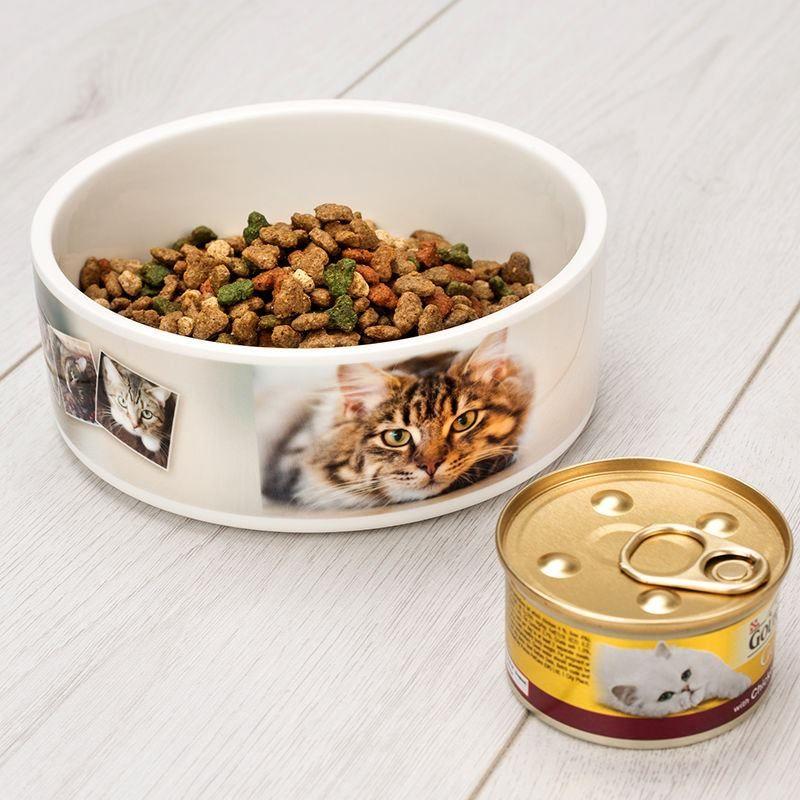 Cat food Pet Bowl