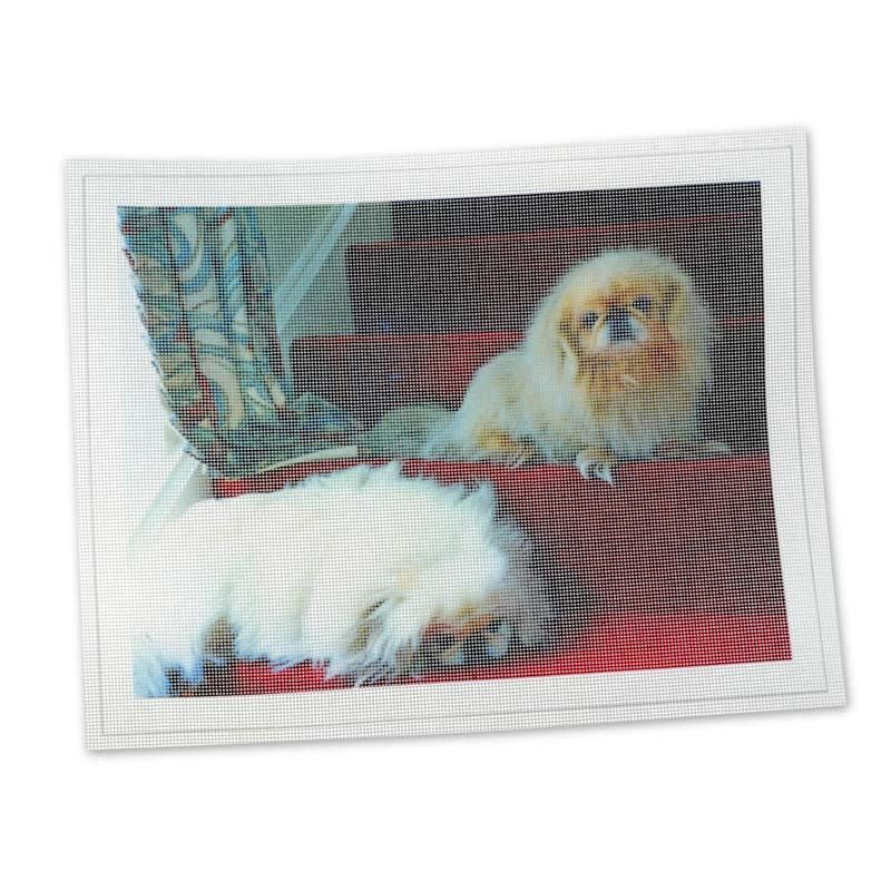 hundefoto auf stickerei stoff