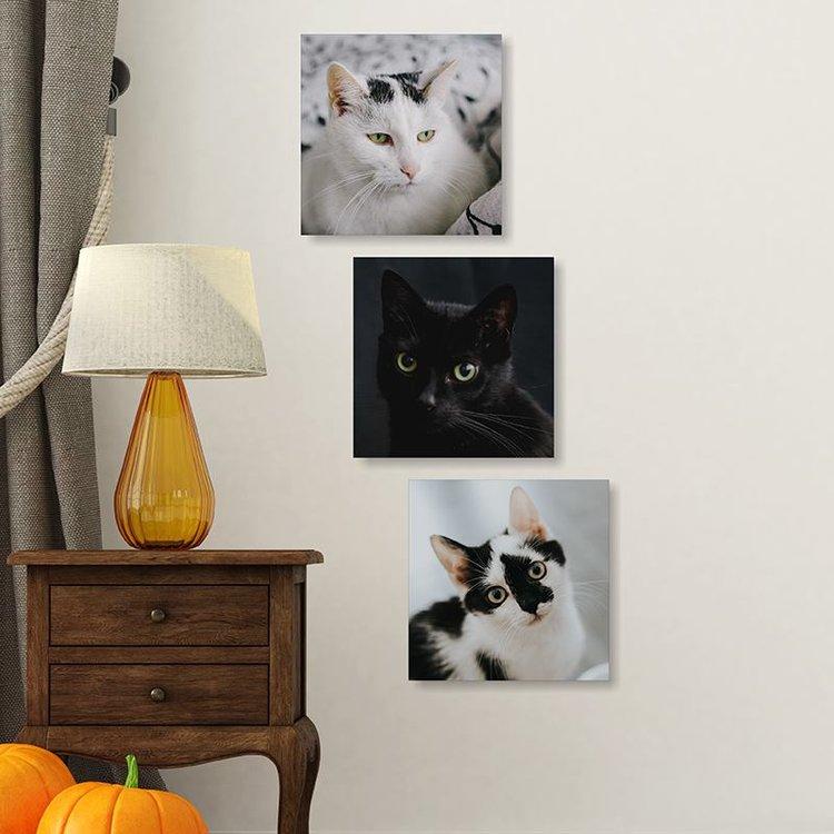 mini photos sur toile impression photo sur mini toiles. Black Bedroom Furniture Sets. Home Design Ideas