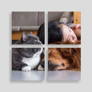 multi paneel foto canvas