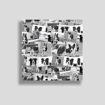 canvas montage