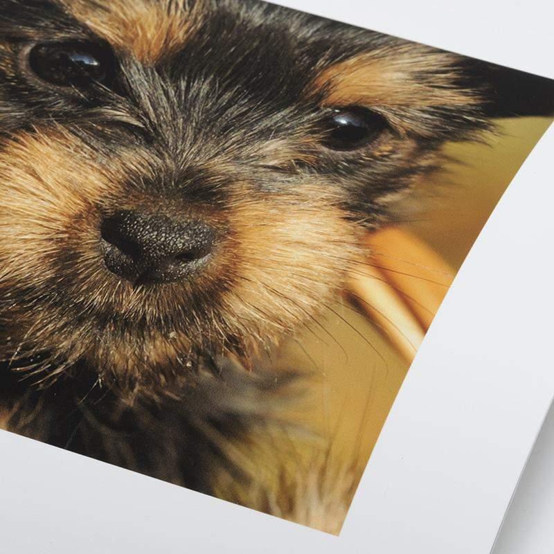 8717b1152eec Framed Photo Prints. Personalised Framed Prints. Made In London, UK.