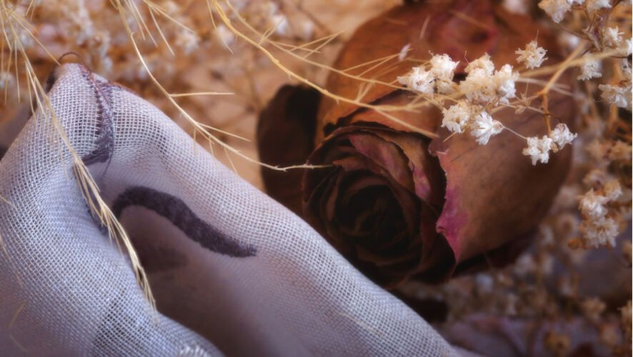 natural fabrics make life better