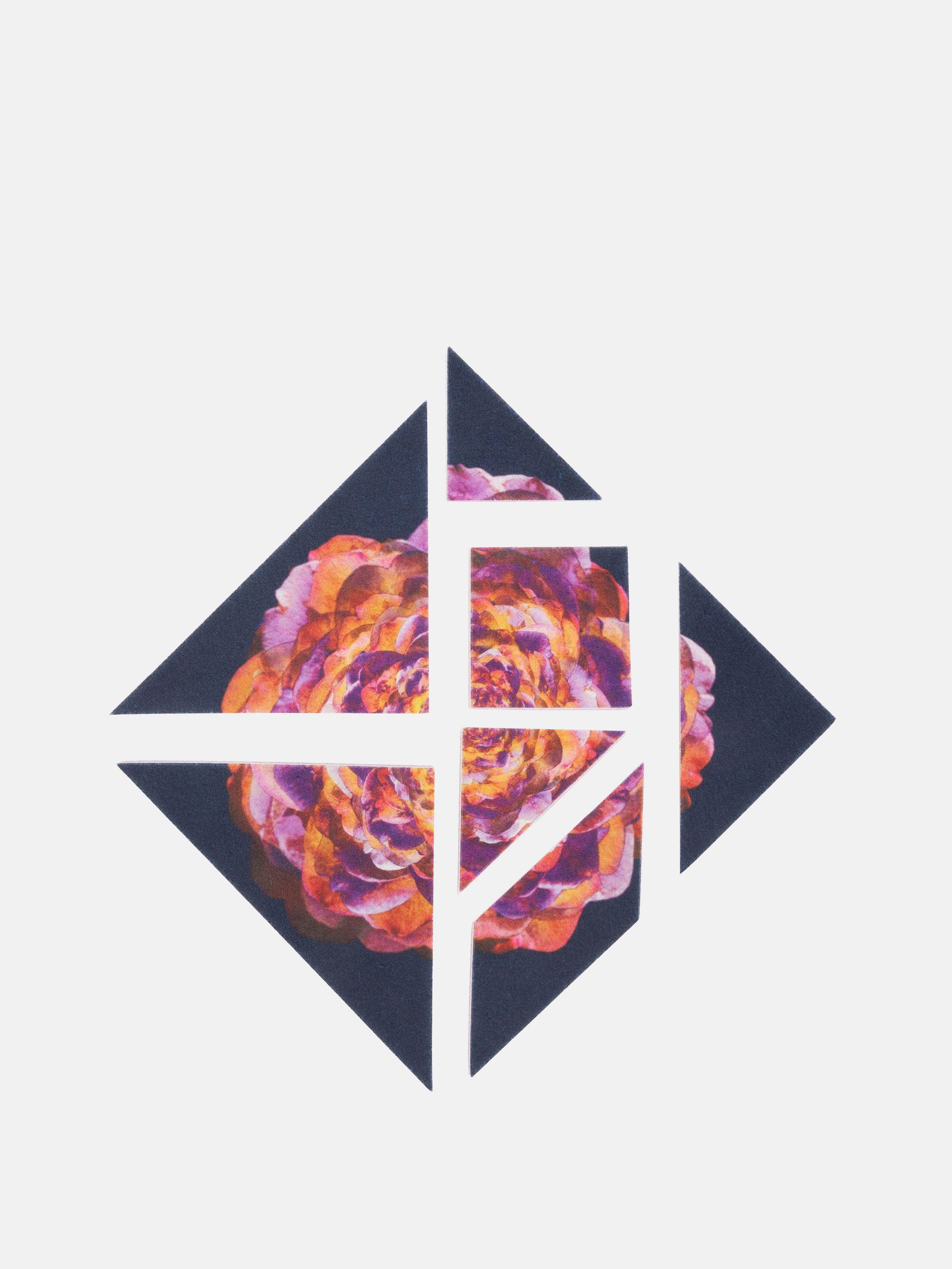 Tangram design printed design for felt puzzle