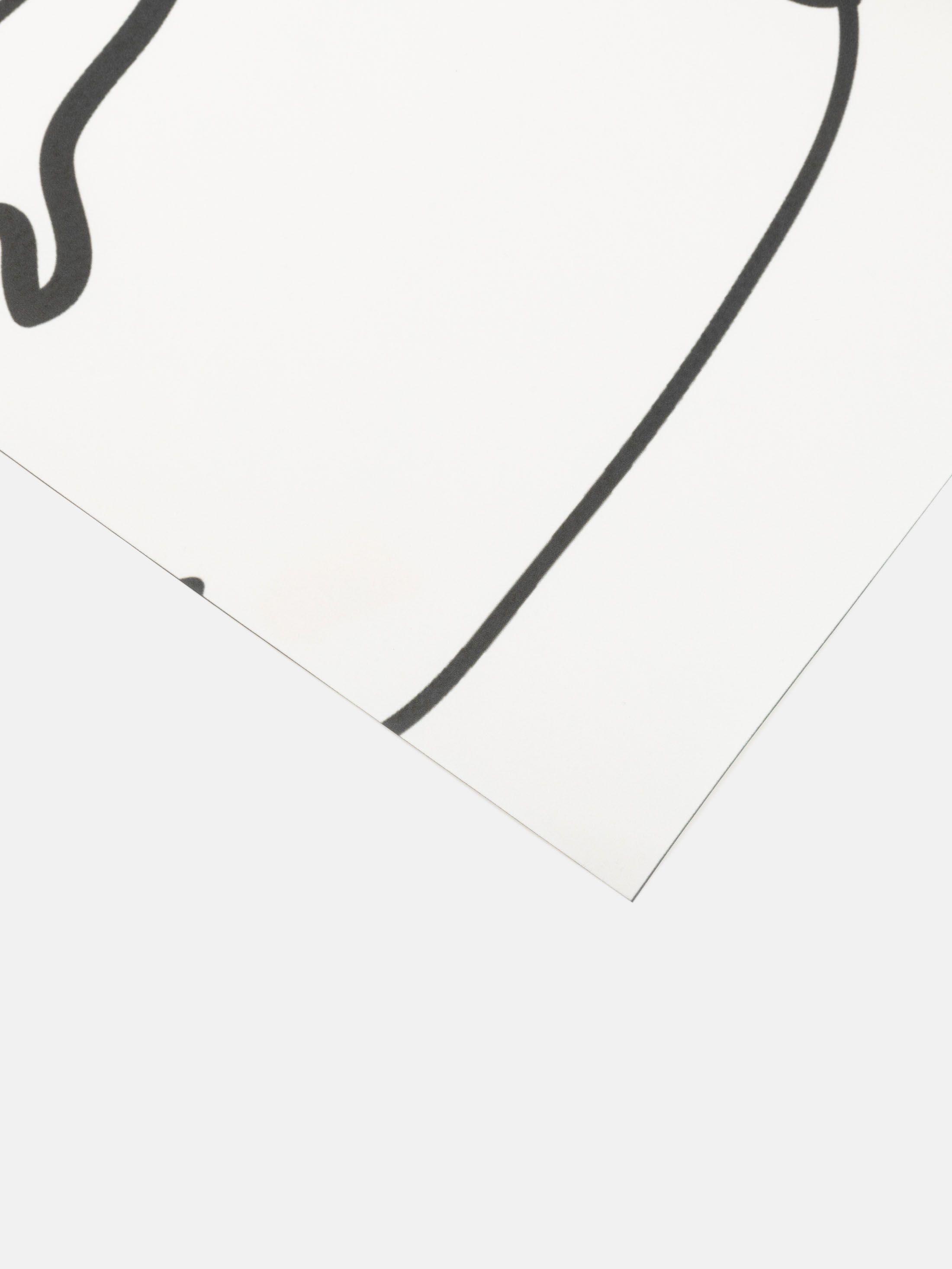 Stampa Carta da Parati Online