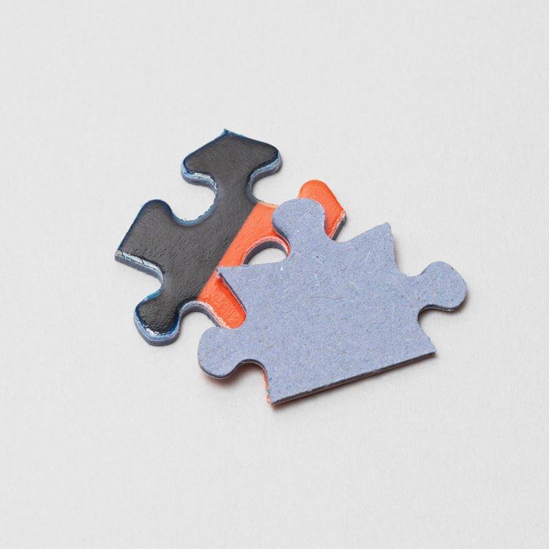 pièces puzzle 500 pièces