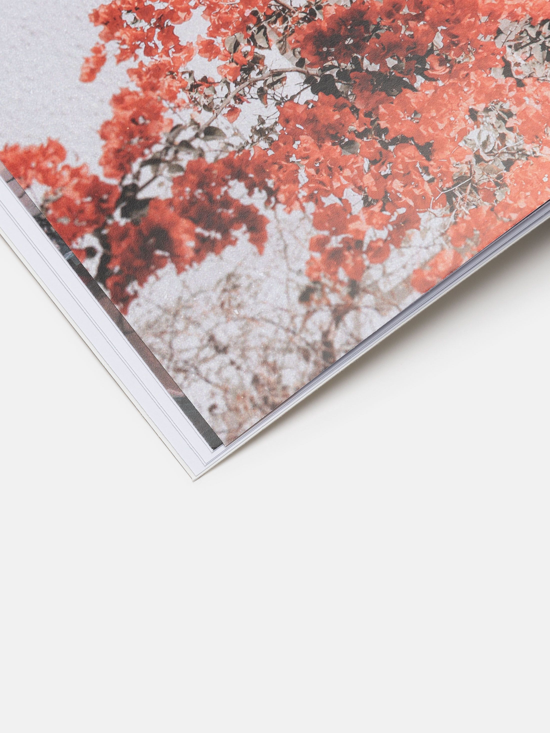 softcover fotobuch mit eigenen bildern