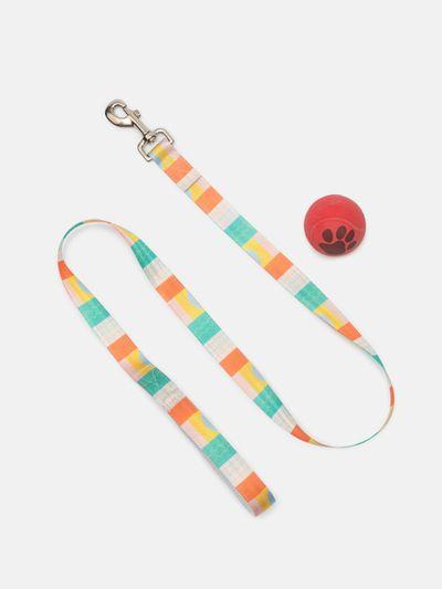 custom dog lead