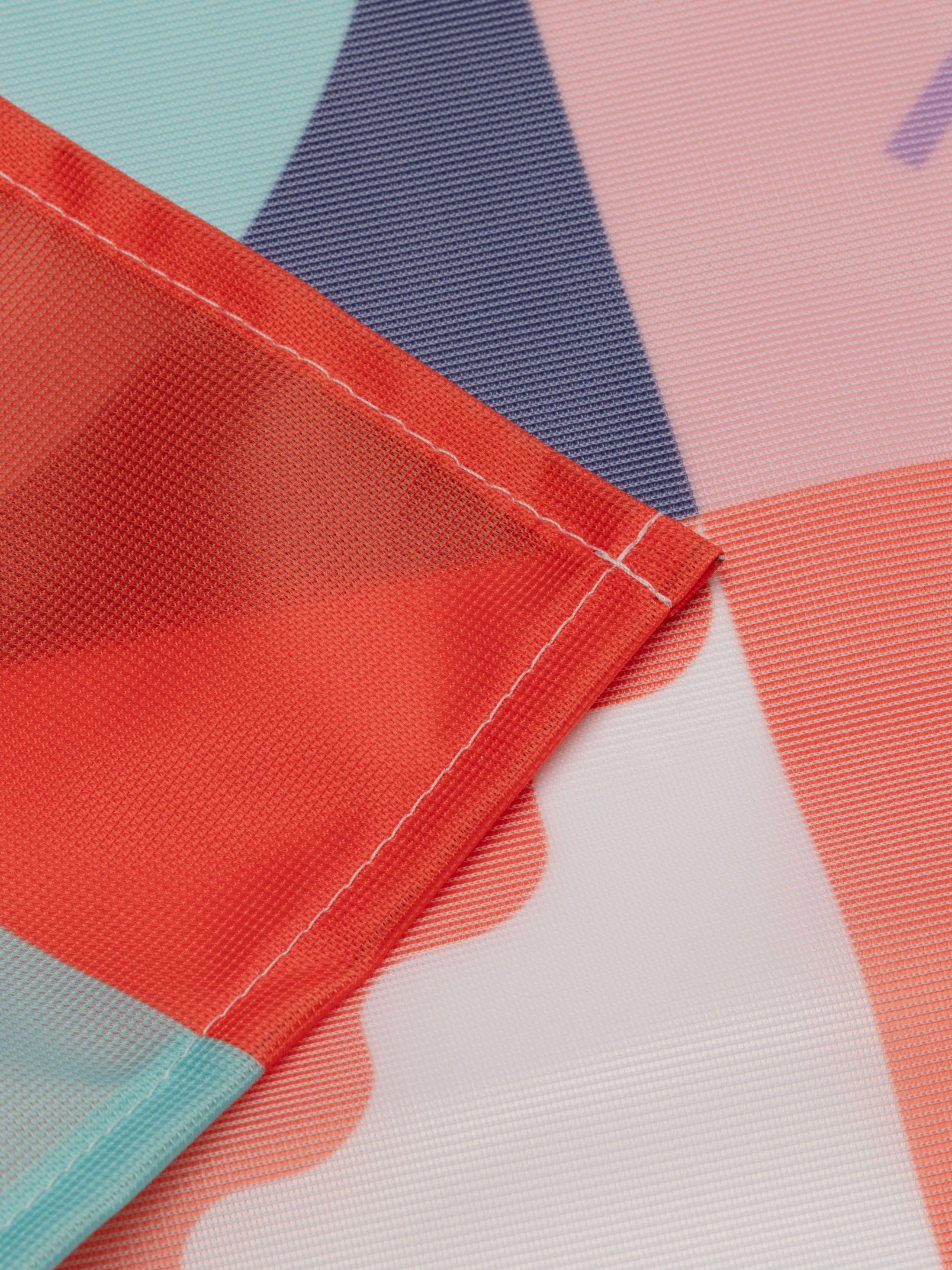 stampa bandiera
