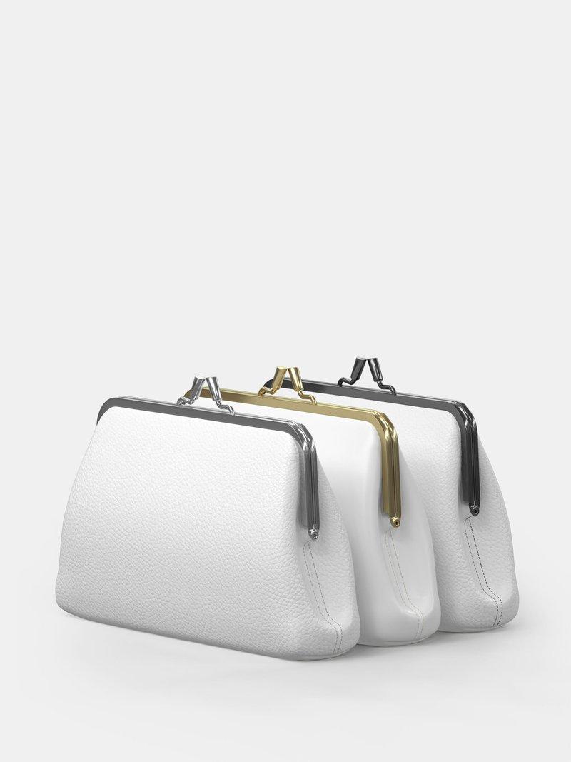 flat frame bag details